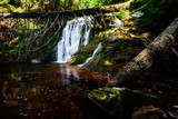 Summer Waterfall - 164730209