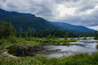 view from the parking lot at  Cheam Wetlands right beside Flood Falls just outside Chilliwack, British Columbia, Canada