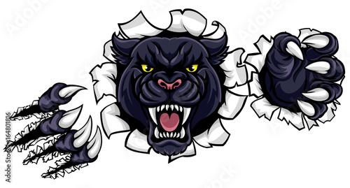 Fototapeta Black Panther Background Claws Breakthrough