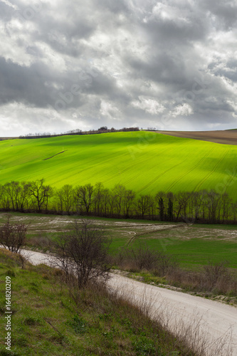 Natural landscape in a spring day, green fields and cloudy sky