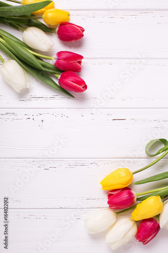 Frame from yellow, pink  and white tulips flowers  on  white wooden background.