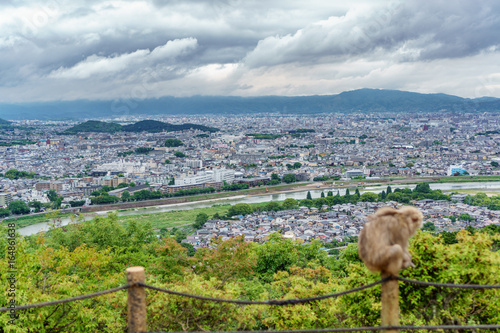 Kyoto from Arashiyama mountain with blurred monkey