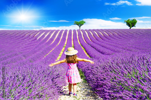 A little girl walks between the lavender fields in Provence Poster