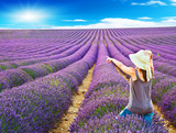 A girl walks in the lavender fields and shows the sun at sunset - 164878647