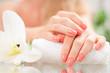 Leinwanddruck Bild - Manicure concept. Beautiful woman's hands with perfect manicure at  beauty salon.