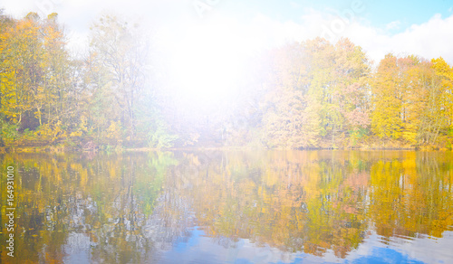 Autumn forest and lake in nature the sun is shining bright.