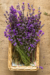 Bouquet of lavagna in the basket