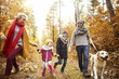 Autumn walk by forest path - 165046696