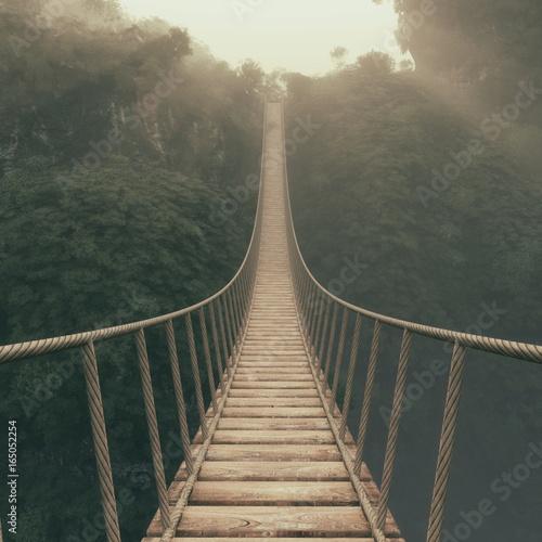 Rope bridge suspended