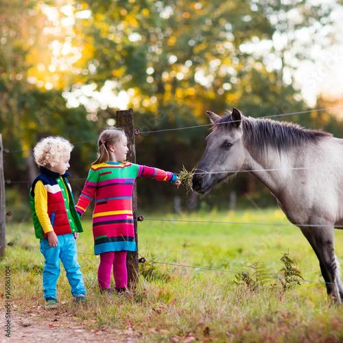 Kids feeding horse on a farm