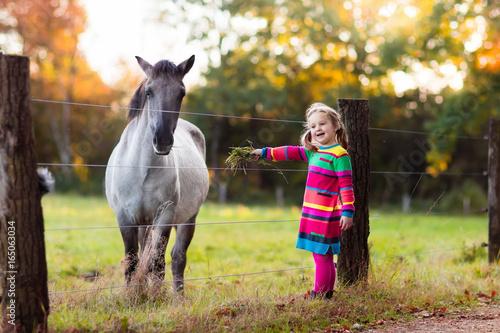 Little girl feeding a horse