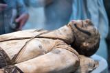 Egyptian mummy head close up - 165070068
