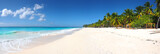 Isla Saona tropical beach panorama - 165157880