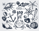 Ink hand drawn set of marine and nautical elements. Sea collection. Template for cards, banners, posters design. Vector illustration. - 165170414