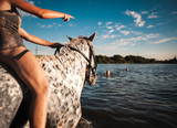 Bathing beautiful horses with people in the lake on a hot summer evening
