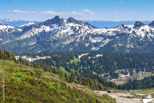 Foto op Canvas Blauw Cascade Mountains, Mount Rainier National Park