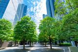 爽やかな緑のビジネス街