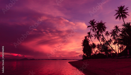 Foto op Canvas Crimson Silhouette of coconut trees by the beach against dramatic sunset sky background.