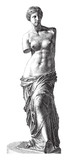 Aphrodite of Milos - Venus - vintage illustration - 165304093