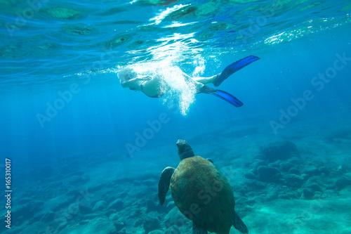 Woman bikini swims encountering sea turtle Caretta in crystal waters
