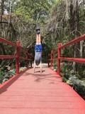 Teen boy doing a handstand on a red wood bridge.