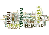 GLOBAL SPREAD OF BIRD FLU Text Background Word Cloud Concept - 165329671
