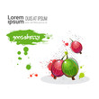 Gooseberry Hand Drawn Watercolor Fruit On White Background With Copy Space Vector Illustration - 165342876