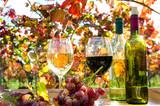 Genuss in der Pfalz: Weinprobe im Herbst, Rotwein, Weißwein, Weinglas und Trauben im Weinberg :) - 165404076