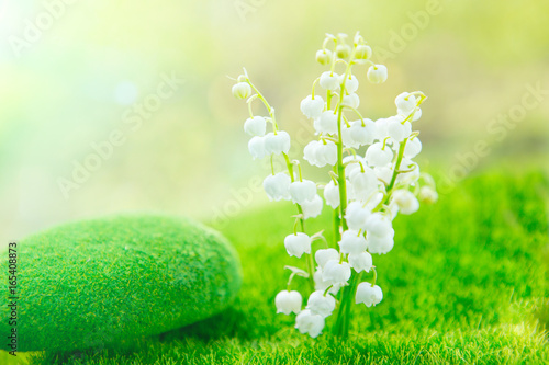 Lily of the valley. Nature flowers in sunny day