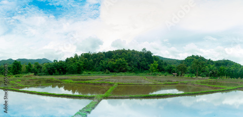 view landscape - Water in the rice field for preparing rice in Thailand