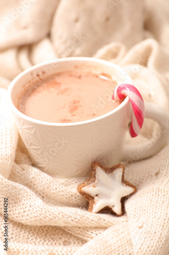 Spoed canvasdoek 2cm dik Chocolade chocolate milk with cocoa and biscuit