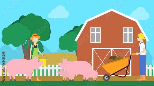 Fotobehang Boerderij Pigs on farm.