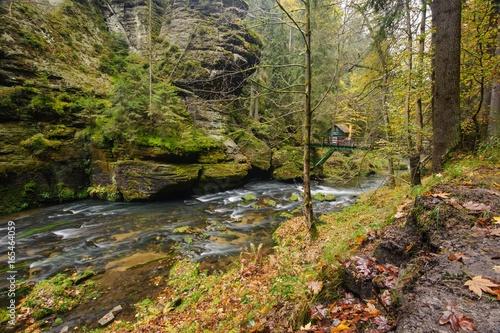 Autumn colors river