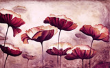 Fototapety Painting poppies canvas