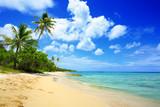 Morze Karaibskie i biała piaszczysta plaża.