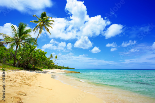 Foto op Plexiglas Tropical strand Caribbean sea and white sand beach.