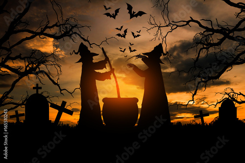 Witch in the halloween night, Concept halloween. Poster