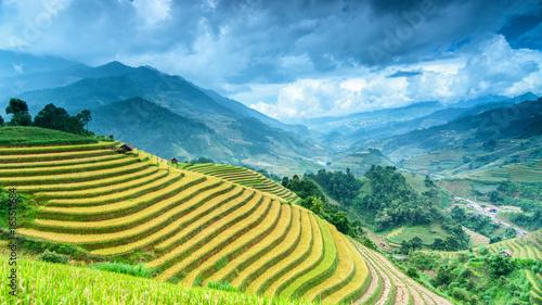 Aluminium Rijstvelden Rice field on terrace Mu Cang Chai Yen Bai,Vietnam
