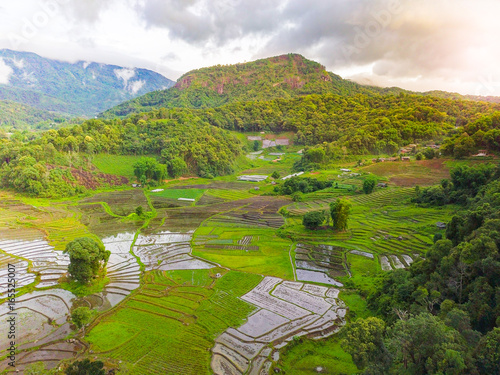 View of rice paddy and rice terrace landscape.