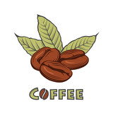 illustration of coffee branch and beans