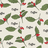 Coffee branches seamless pattern. Vector color illustration.