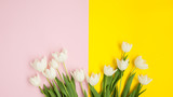 Pink and yellow surface with tulips
