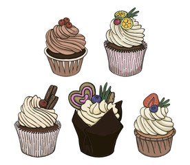 Hand drawn vector set of cupcakes with cream and berries isolated on white background