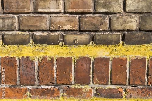Mauer aus gelb-roten Ziegelsteinen mit Flechten