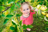 Cute little girl looking at apples