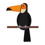 Exotic natural bird - 165597025