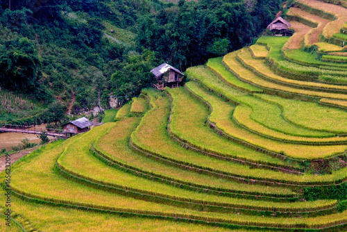 Tuinposter Rijstvelden Rice terrace and some small huts in the ladder