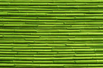 Green bamboo fence background and texture © ohishiftl
