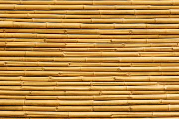 Yellow bamboo fence background and texture © ohishiftl