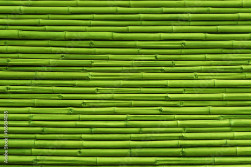 Fototapeta Green bamboo fence background and texture